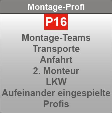 P16-Montageprofis